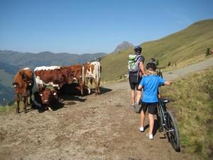 Mountainbiken in de Hohe Tauern