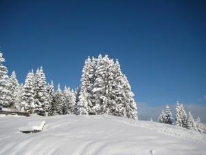 strak blauwe lucht en verse sneeuw